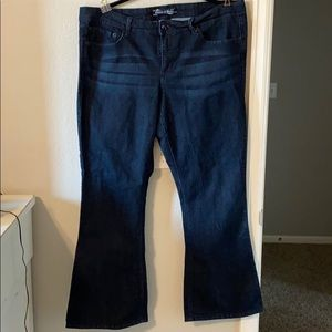 Torrid source of wisdom jeans